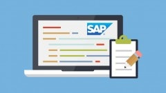 Learn SAP Course – Online Beginner Training